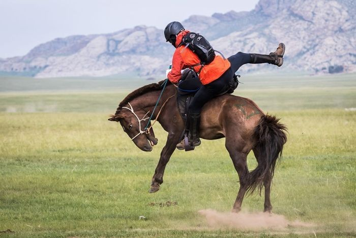 PHOTO: Rider Anthony Strange tries to hold onto a bucking horse during the Mongol Derby 2016. (Facebook: Mongol Derby)