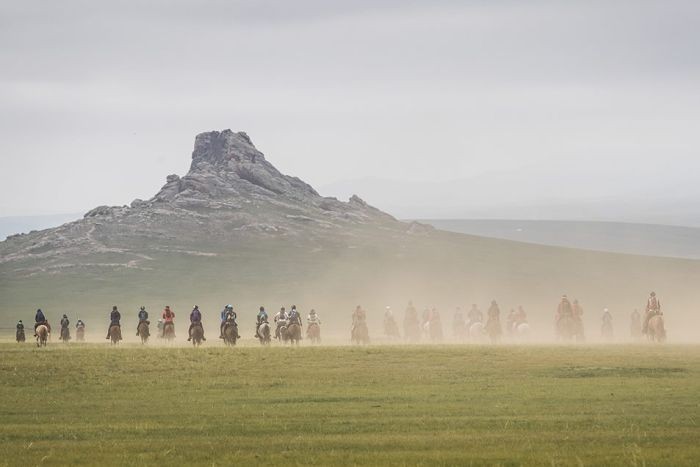PHOTO: Only about 40 per cent of riders complete the race each year, some with serious injuries. (Facebook: Mongol Derby)